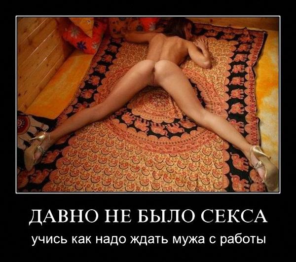 porno-gruppovuha-lesbiyanok-kartinki